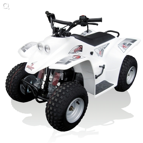 Quadzilla Buzz Quad
