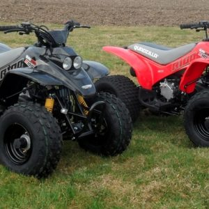 Quadzilla R100 Quad